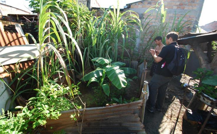 "Jorge ""Coco"" Alarcon inspects a garden in Peru"